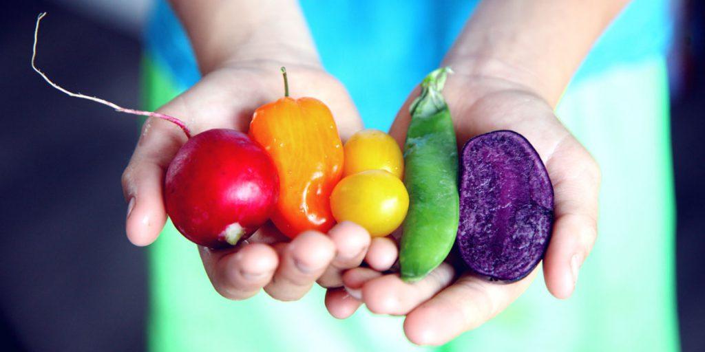 Healthy Food held in hands