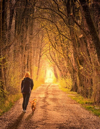 Woman walking in the woods with dog